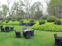 山东苗木基地:绿化苗木追肥的注意事项